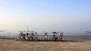 Fahrrad-Tour - Arrangement des Hotel Adena Bremerhaven