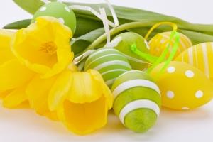 Farbenfrohe gelbe Tulpen mit grünen Blättern und Ostereiern zu